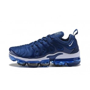 Homme Nike Air VaporMax Plus / TN Bleu